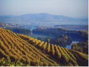 Scenic Wine Tours In Tuscany Reviews